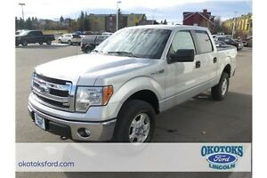 2014 Ford F-150 XLT 5.0l 8 cylinder, only 48,000kms
