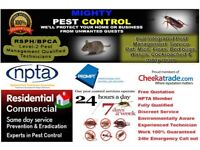 Pest Control-Getting rid of Bedbugs Ants Cockroaches Mice in Leytonstone Wanstead Chingford Woodford