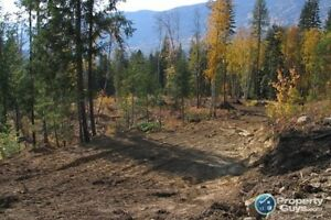 Lot 5 Phase 3 Pass Creek Heights Castlegar 196463