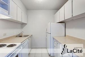 SPECIAL PROMOTION 1 Bedroom Apartment for Rent Downtown Montreal