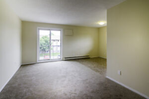 Beautiful & Renovated 2 Bed for Rent - Pets Welcome!