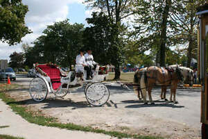 Horse and carriage dinner date!!!!! Windsor Region Ontario image 1