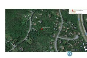 Level building lot, zoned R6, over 3 acres