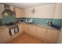 Spacious 2 bedroom flat close to town - Private Landlord