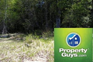 25 acres of subdividable land Slocan 196881