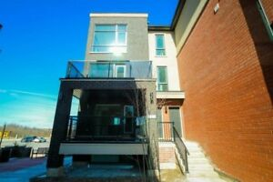 Brand New 3 Bedroom End Unit Townhouse For Rent