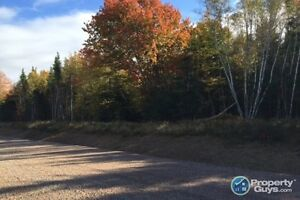 Beautifully treed 1 acre building lots in new S/D - Debert