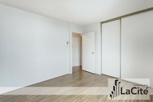 4 BEDROOM / 2 BATHROOM APARTMENT for rent - Downtown Montreal /
