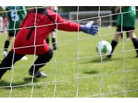 U7 year 2 goal keeper wanted.exta training for free