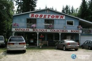 Antiques Shop in South Slocan ID 30950