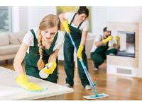 Do you need a cleaner? Hire a professional insured cleaner now