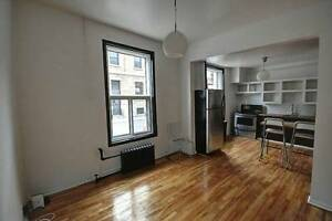 Bright, Spacious 5 Bedroom in Plateau - Right next to Sherbrooke