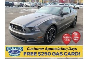 2014 Ford Mustang GT 5.0l v8 manual transmission, a style icon