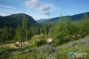 Lot 1 Phase 3 - 6.3 Acre - Pass Creek Castlegar 196460