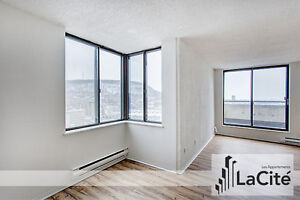 LARGE 2 BEDROOM APARTMENT for rent - Downtown Montreal / Plateau