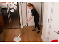 ExtremelyDetailed,Spotless,End of Tenancy Cleaning,Reliable,Cleaner,Domestic Cleaner,Cleaning Lady