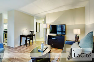 FURNISHED ONE BEDROOM - Downtown Montreal / Plateau