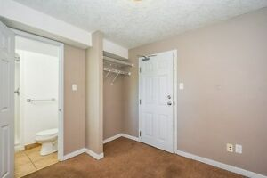 STEPS TO WLU STUDENTS RENTALS ALL INCL, FREE WIFI, A/C Kitchener / Waterloo Kitchener Area image 7