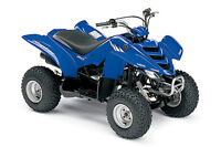Wanted -Yamaha, Kawasaki or Arctic Cat  50cc ATV