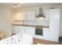 Great 4 Bedroom House with garden, large living room/ kitchen, Roehampton