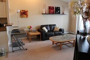 Fully Furnished Top Floor 1-Bed Condo w/ Vaulted Ceilings South