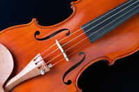 An Introduction To Playing Violin For Adults
