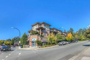 One bedroom and a den- North Vancouver Marine Dr