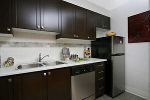 Appartements beaux et spacieux! Animaux Bienvenus! Gatineau Ottawa / Gatineau Area image 2