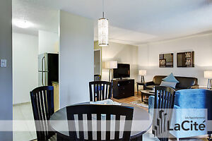 Modern Furnished One Bedroom for Short Term Rental in Downtown