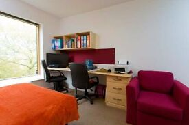 University halls studio flat available