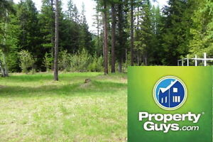 Fully Serviced .625 acre lot 5 min from downtown Salmo 196925