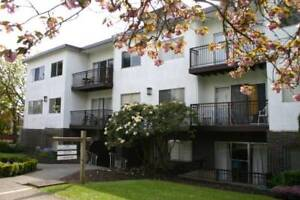 $1475 / 1br - Coast House 1bdrm for rent!