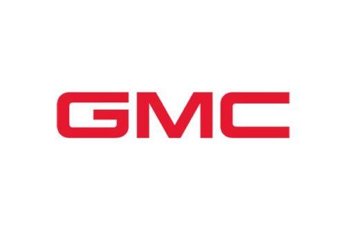 GMC\CHEVROLET\BUICK 12568387 GENUINE OEM SPARK PLUG
