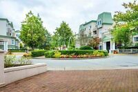 Furnished 1 Bdr Suite by Coquitlam Centre/ $1350