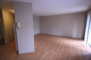 2 bedroom apartment with in suite laundry, cat friendly, Abby.