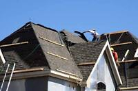 Need a new Roof? Or a Repair?