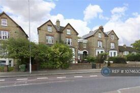 3 bedroom flat in Honor Oak, London, SE23 (3 bed) (#1074630)