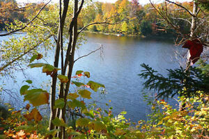 Browse Homes and Land  for Sale in Calabogie.