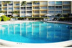 Hollywood Beach / Hallandale Beach Condo