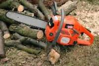 DO YOU NEED A TREE REMOVED - 30% OFF TODAY