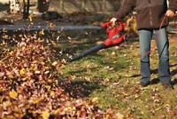 We are now booking for fall clean ups!