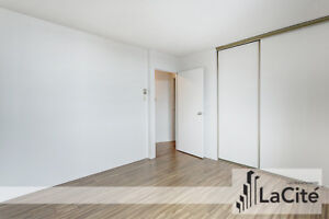 4 BEDROOM / 2 BATHROOM APARTMENT For Rent   Downtown Montreal /