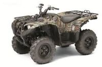 Looking for a Cheep 4WD Quad, just for plowing my driveway