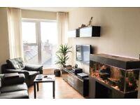Modern 1 bed apartment Leeds Road Harrogate £625.00