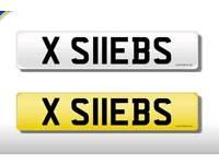 **Number Plate** X S11EBS/SHEBS