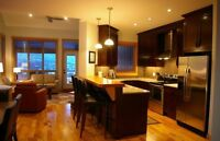 A Luxury vacation at The Residences at Fairmont Ridge