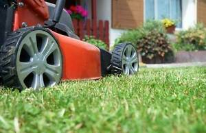 Doncaster East Lawn mowing Doncaster East Manningham Area Preview