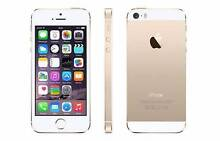 Apple iPhone 5S 16GB Rose Gold Fyshwick South Canberra Preview