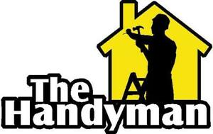 HANDYMAN -  snow removal, painting, cleaning, fixing