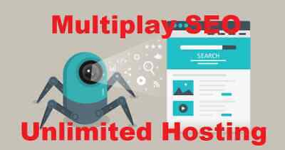 2 Start Your Web Spider Seo Hosting Business Service Unlimited.